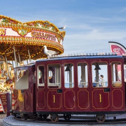 Brighton City Trip