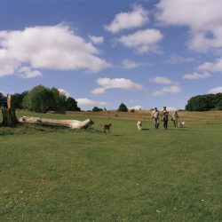 Parliament Fields, Hampstead Heath