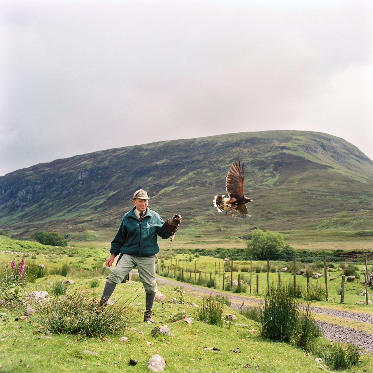 Beinn-Eigh-Park, Scotland